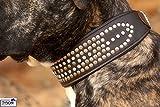 Leder Braun Halsband Rubino Strass Nieten Geschwungen Schwarz WEICH und BREIT M L XL Tysons Lederhalsband (M)
