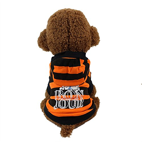 Haustier Pullover,Welpen Gedruckt Baumwoll T-Shirt,Mode Sommer Niedlichen Hund Haustier Weste,für Kleine Hunde,Welpen,Schnauzer, Teddy,Pudel,Chihuahua (Orange, S) -