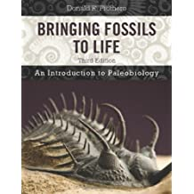 Bringing Fossils to Life
