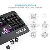 REIDEA KM06 Mechanische Gaming-Tastatur mit rotem Schalter, Full RGB, programmierbar für Profi-Gamer, Full Keys Non-Conflict,
