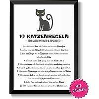 10 witzige Katzenregeln - Hausor