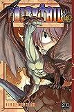 Fairy Tail Vol.49