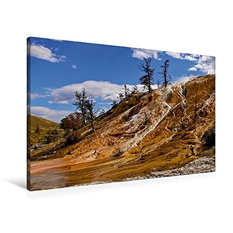 Premium Textil-Leinwand 90 x 60 cm Quer-Format Mammoth Hot Springs Yellowstone | Wandbild, HD-Bild auf Keilrahmen, Fertigbild auf hochwertigem Vlies, Leinwanddruck von Silvia Drafz