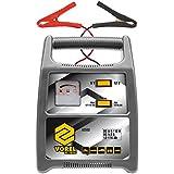 Baterie-Ladegerät 6/12V 8A 116Ah