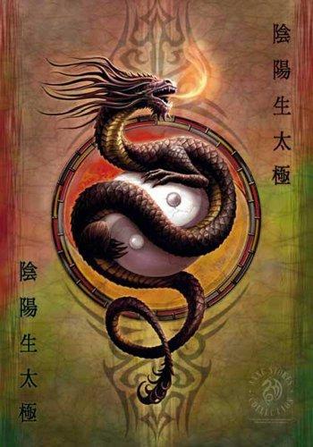 Empire Merchandising GmbH-Poster Anne Stokes-Yin Yang, motivo: bandiera di protezione