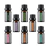 Die Top 8 Aromatherapie Öle – 100% reine ätherische Öle in einem Geschenkset 8 x 10 ml von WASSERSTEIN (Lavendel, Teebaum, Eukalyptus, Zitronengras, Orange, Pfefferminze, Weihrauch, Rosmarin)