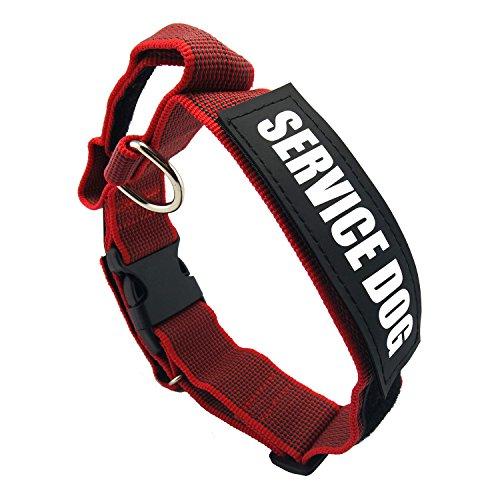 Hundehalsband mit Control Griff Pet Jump widerstandsfähigem verstellbar Halskette Service Klett Patch explosionsgeschützter reflektierend Hunde abnehmbarer Nylon Chaplet Training Supplies (rot) (Pudel-patch)