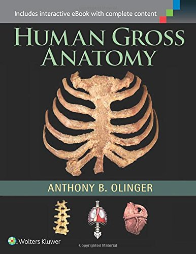 PDF DOWNLOAD Human Gross Anatomy Best Online - by Anthony B
