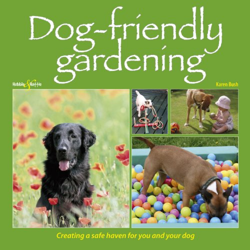 Dog-friendly Gardening - Creating a safe haven for you and your dog