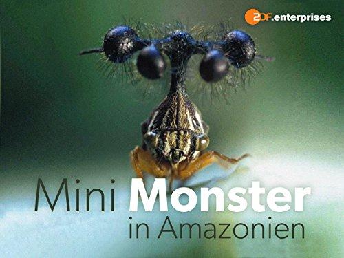 Mini-Monster in Amazonien