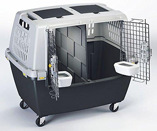 Cajou Flugbox IATA mit Trennwand, Rollen, Sicherheitsgurt, Wassernapf Doppelbox 80 x 58 x 62 cm