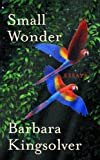 Small Wonder (English Edition)