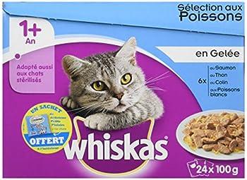 Whiskas sachets fraîcheur aux Poissons en gelée pour chat 1 avec 24 x 100g - Lot de 2 (48 Sachets fraîcheur)
