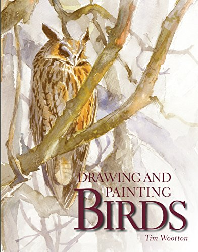 Drawing and Painting Birds (English Edition) por Tim Wootton