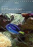 Riffbewohner - Bunte Fische, Anemonen und noch viel mehrAT-Version  (Tischkalender 2016 DIN A5 hoch): Tropische Riffe bieten eine große Vielfalt an ... Farben (Planer, 14 Seiten ) (CALVENDO Tiere)