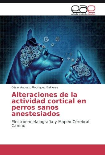 Alteraciones de la actividad cortical en perros sanos anestesiados: Electroencefalografía y Mapeo Cerebral Canino por César Augusto Rodríguez Balderas