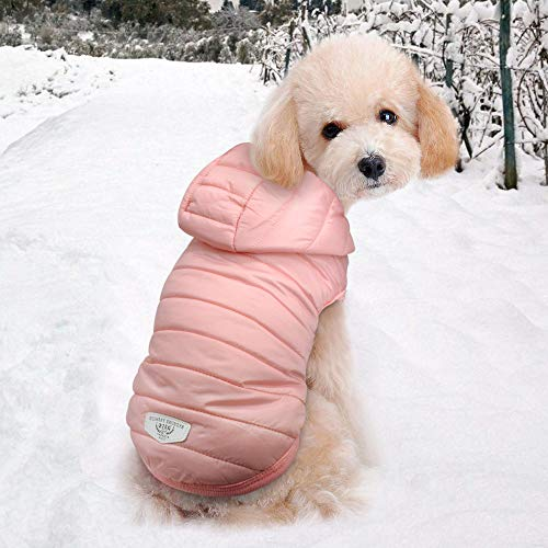 Camerlon Pet Chihuahua Pug Ropa Perros pequeños medianos