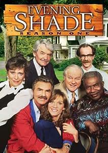 Evening Shade: Season One [DVD] [Region 1] [US Import] [NTSC]