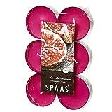 Ivyline s0392120290Citronella Teelichter 12Maxi Citronella & Granatapfel-Dark-Fuchsia Pink