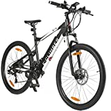 AsVIVA E-Bike Mountainbike 27,5