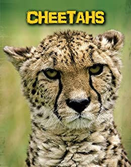 Cheetahs living in the wild big cats ebook charlotte guillain cheetahs living in the wild big cats by guillain charlotte fandeluxe Ebook collections