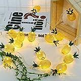 La Lanterna Principale All'Aperto Delle Luci Di Fiaba Del Giardino Delle Lanterne Del Led Accende Il Giardino Ananas Da Frutta Vintage A Forma Di Ananas, 10 Metri 100 Luci, Modelli Plug-In