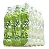Best Body Nutrition - L-Carnitin-Drink - L-Carnitin Grüntee-Limette, 2er Pack (2 x 6 l)