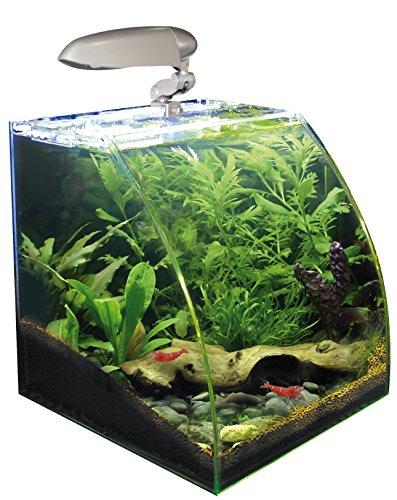 Acquario wave box vision 30 30x30x30h 20lt con filtro e lampada