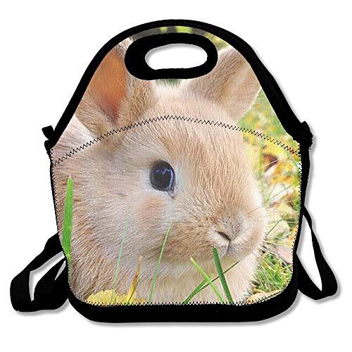 huiaibaihuidian Marine-Corps Praktische Lunchpaket-Tasche für die Reiseschule Picknick-Einkaufstüten Picknicktasche im Freien -