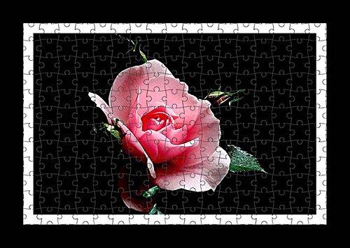 puzzle-style-pre-assembles-imprimer-mur-de-rose-flower-bud-petals-light-black-background-by-lisa-lof