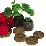 Elixir Gardens ® Jiffy 7C Peat Free Coir Plug Propagation Pellets | 45mm x 42mm | x 500