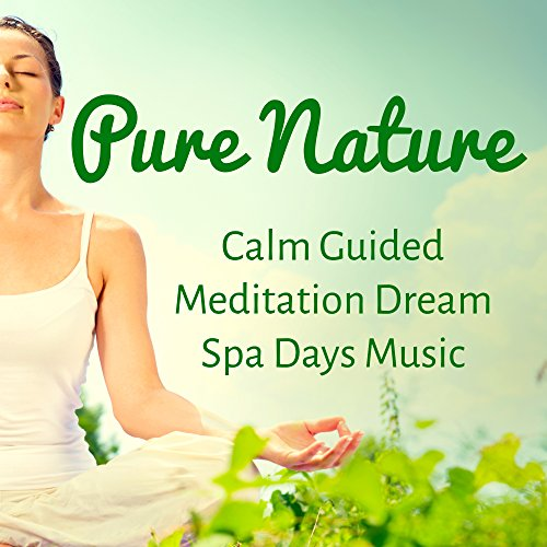 Pure Nature - Calm Guided Meditation Dream Spa Days Music to Increase Brain Power Spiritual Training and Zen Style
