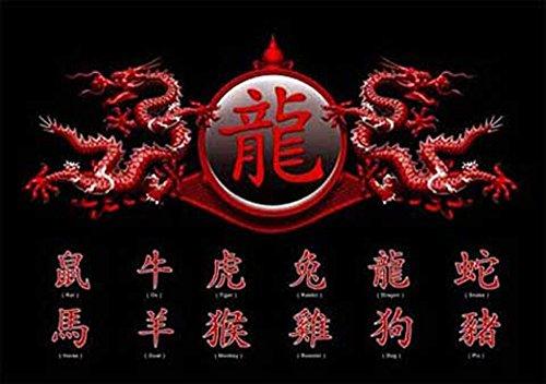 empireposter - Chinese Writing - Zodiac, Dragon - Größe (cm), ca. 91,5x61 - Poster, NEU -