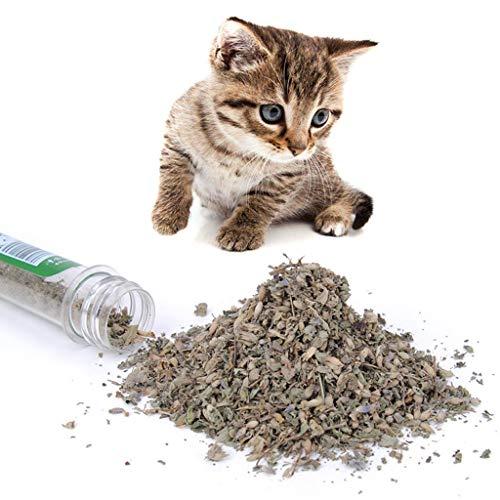 Yanhonin Catnip Katzenminze - Bio - Kauspielzeug für Katzen - für Haustiere