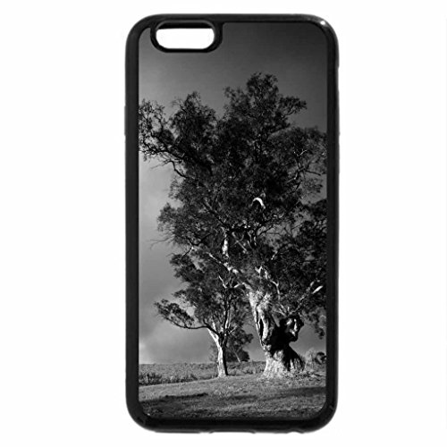 iphone-6s-plus-case-iphone-6-plus-case-black-white-vineyard-under-stormy-skyies