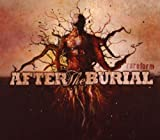 Songtexte von After the Burial - Rareform