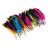 Baoblaze 50er Set Natur Dekoration Ente Feder Party Kostüm Deko Fertigkeit Basteln Feder Naturfedern Boho Hippie Indianer Kostüm - Mehrfarbig