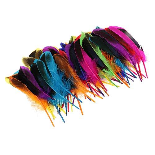 Baoblaze 50er Set Natur Dekoration Ente Feder Party Kostüm Deko Fertigkeit Basteln Feder Naturfedern Boho Hippie Indianer Kostüm - Mehrfarbig (Party Ente Dekorationen)