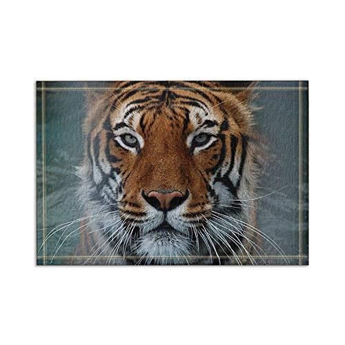 Vrupi Tier dekorative Tiger Bad Teppiche rutschfeste Boden Eingänge Outdoor Indoor Haustür Matte, 15.7x23.6in Badematte Bad Teppiche