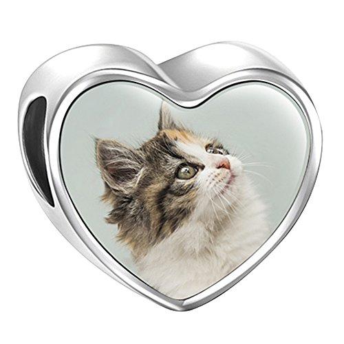 Soufeel Personalisiert Foto Charms Beads Anhänger Katze Klassic Schmuck 925 Sterling Silber Geschenk für Damen (Sterling Silber Katze Armband)