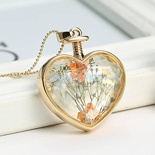 ELECTROPRIME Clear Glass Heart Floating Dried Flower Locket Gold Chain Necklace Jewelry