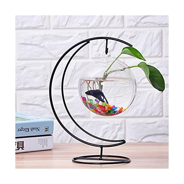 pot de fleur vase en verre suspendu fishbowl conteneur terrarium d coration maison bureau. Black Bedroom Furniture Sets. Home Design Ideas