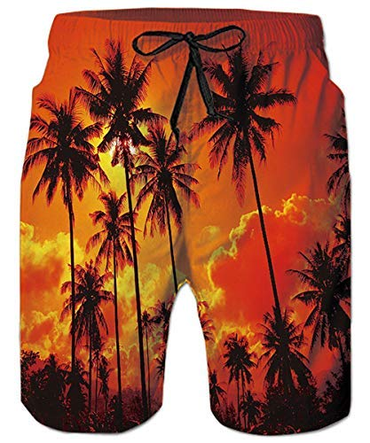 aca9cd4622a2 ALISISTER Swim Shorts for Men 3D Funny Plus Size Swimming Trunks Summer  Hawaii Coconut Tree Surf