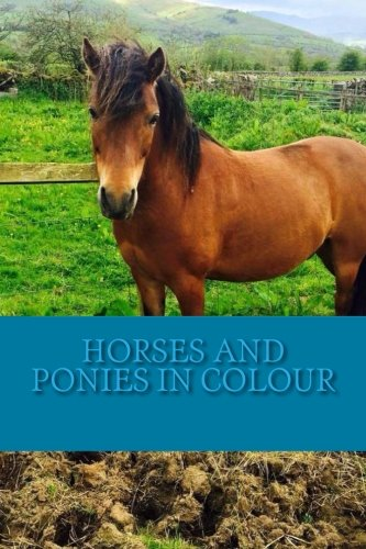 Horses and Ponies in Colour: Full colour photographs of various breeds of horse and pony por C Cartmell