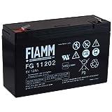 FIAMM Ersatzakku für Kinderfahrzeuge Kinderauto Kinder-Quad 6V 12Ah (ersetzt auch 10Ah), 6V, Lead-Acid
