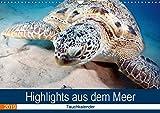 Highlights aus dem Meer - Tauchkalender (Wandkalender 2019 DIN A3 quer): Erleben Sie die farbenfrohe fantastische Welt unter Wasser! (Monatskalender, 14 Seiten ) (CALVENDO Tiere)