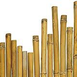 N° 25 Canne Bamboo Bambù cm 300 x Ø mm 28-30 Per piante,agricoltura,orto,arredi,strutture,decorazioni