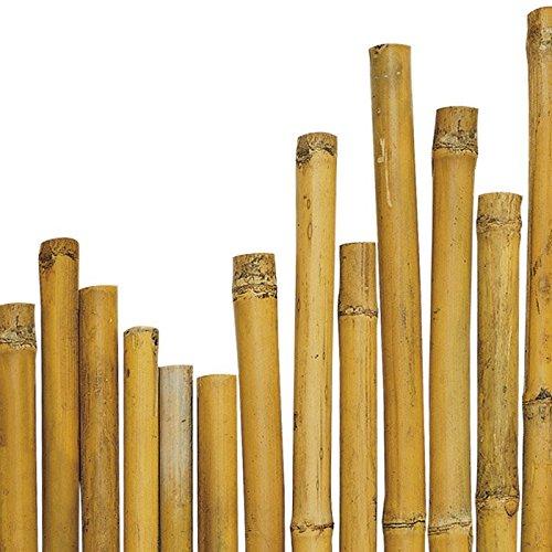 N° 25 Canne Bamboo Bambù cm 180 x Ø mm 28-30 Per piante,agricoltura,orto,arredi,strutture,decorazioni