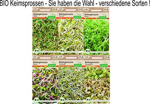 Bio Keimsprossen verschiedene Sorten Alfalfa Radies Broccoli Kresse Mungbohnen Radies