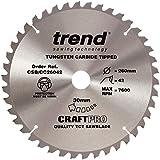 Tendance CSB/cc26042260x 30mm 42dents CraftPro Scie Lame